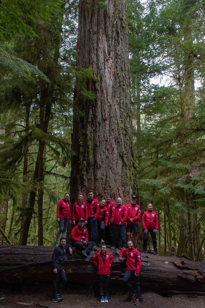 Wounded Warrior Run in Cathedral Grove
